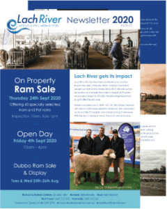 LachRiver Merino and Poll Merino Stud Newsletter